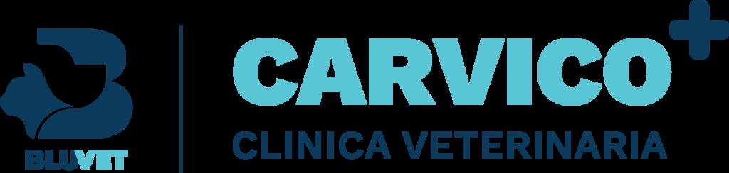 Carvico BV