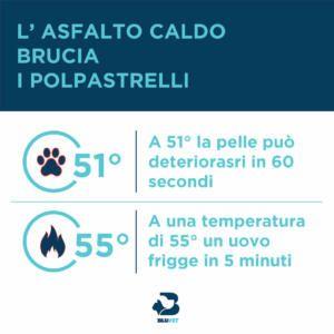 temperatura asfalto e colpo di calore cane