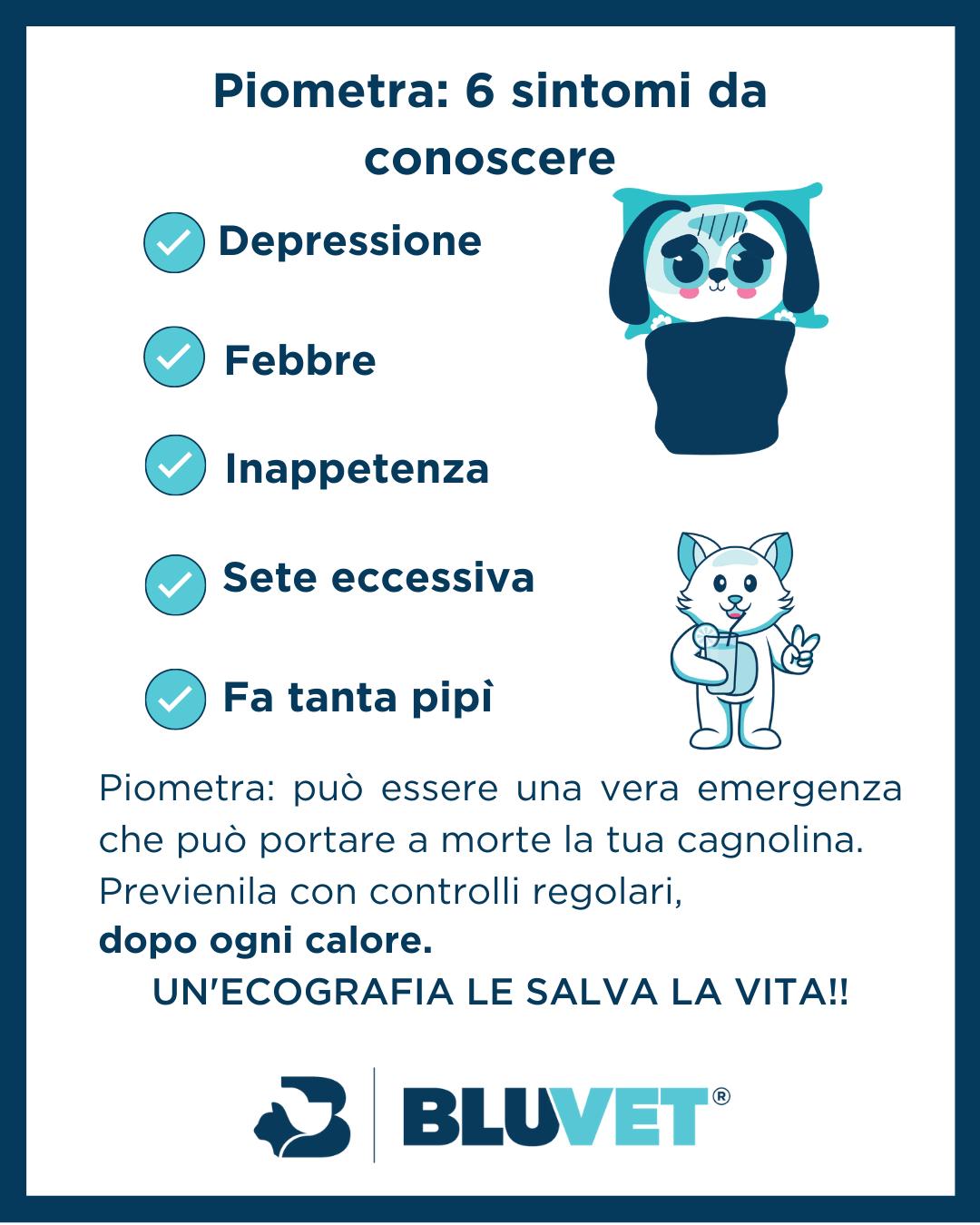 5 sintomi di piometra nella cagnolina