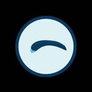 anchilostoma