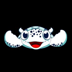 tartaruga acqua di fronte