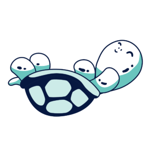 tartaruga da terra ribaltata