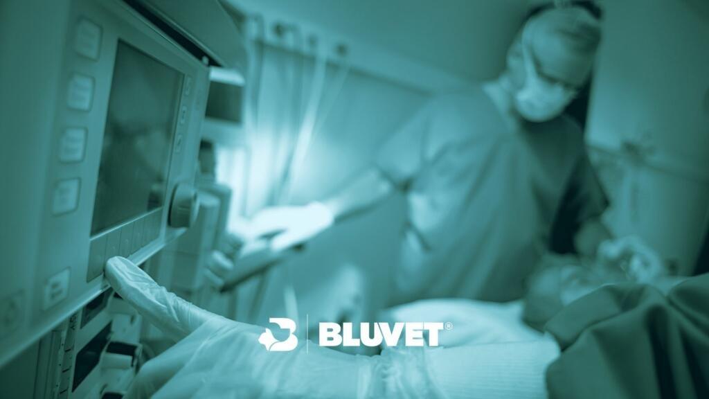 Anestesista veterinario