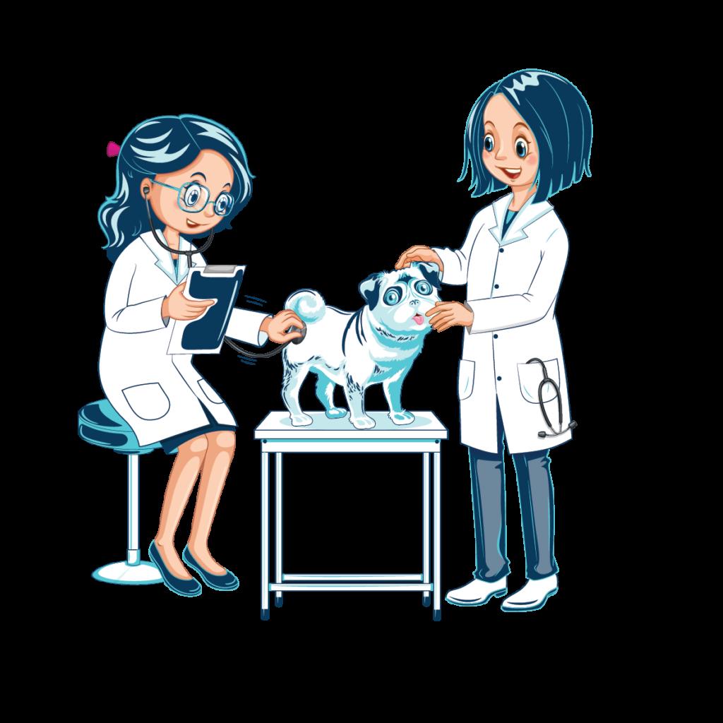 veterinarie visitano cane