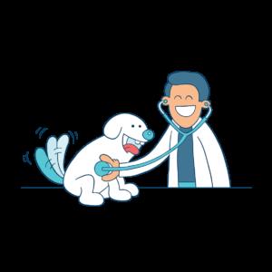veterinario con fonendoscopio e cane