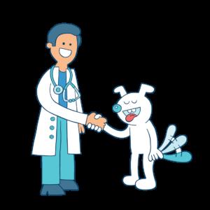 veterinario con il cane da la zampa