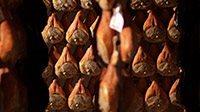 levoni_prosciutto_parma_interna-articolo_2(2)