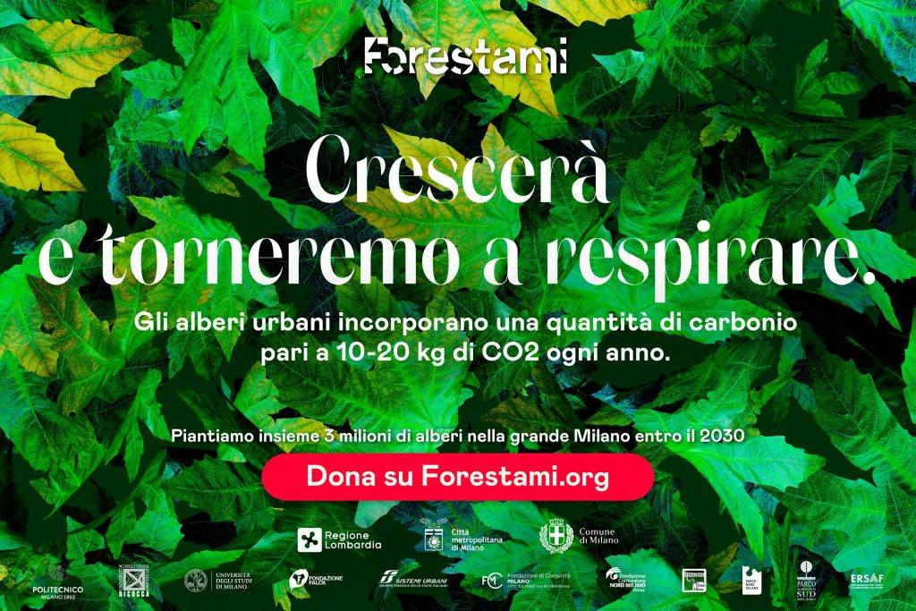Forestami new advertising campaign