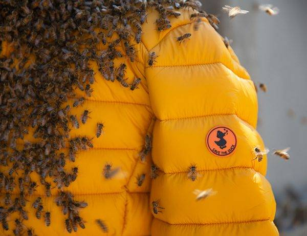 we-respect-bees-sustainability